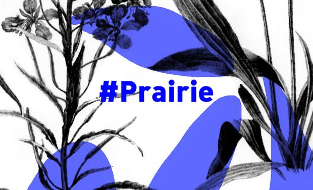 Visuel du projet HashtagPrairiePartDieu