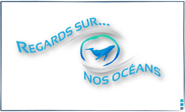 Project visual Regards sur nos océans