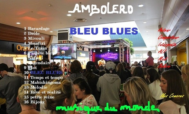 Visueel van project Album Bleu Blues
