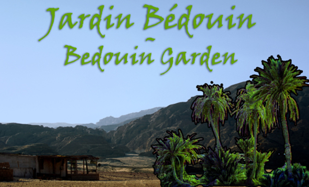 Project visual Jardin bédouin