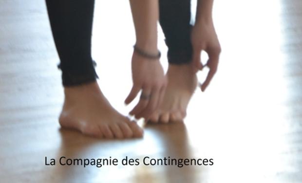 Visuel du projet La Compagnie des Contingences