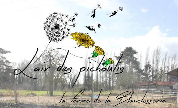 Visueel van project La Ferme de la Blanchisserie