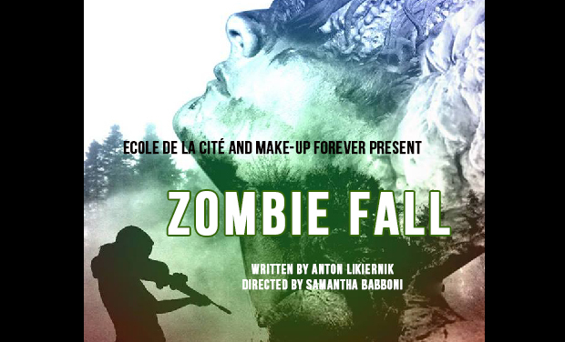 Visuel du projet Zombie Fall
