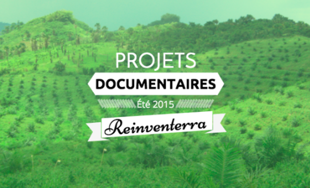 Project visual L'agroforesterie, un moteur de biodiversité : documentaire sur le cas Indonésien