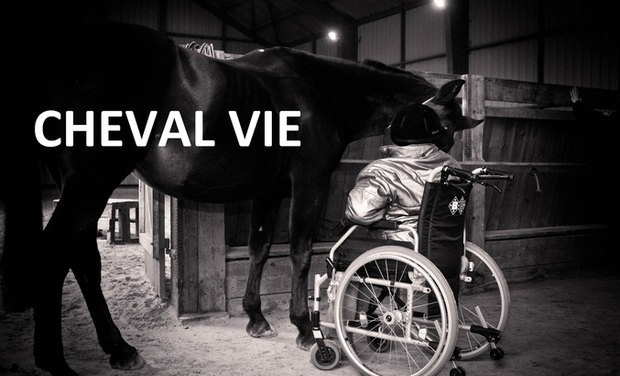 Project visual Cheval Vie