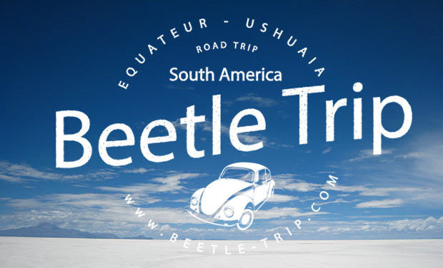 Project visual Beetle trip
