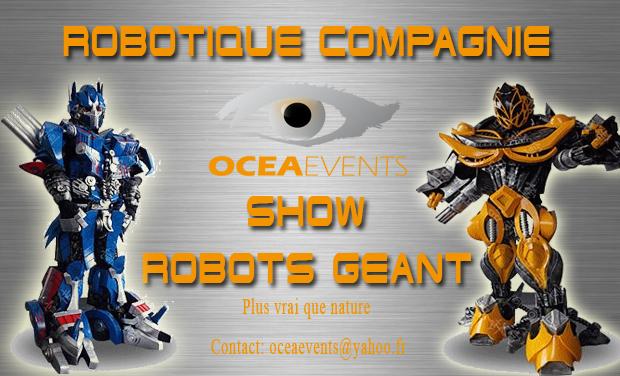 Project visual Robotique compagnie