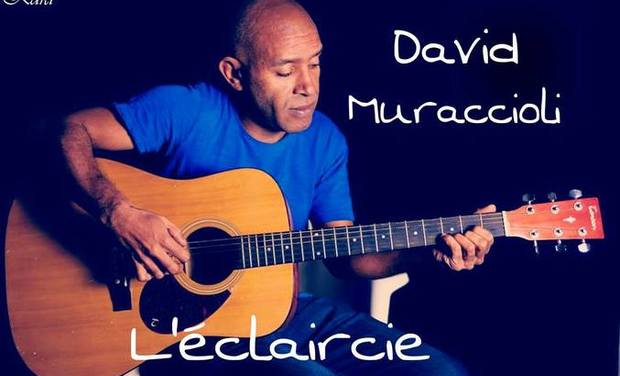 Visueel van project Aidez pour Financer  L'album L'éclaircie de David Muraccioli