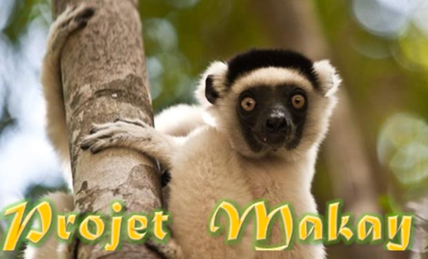Visuel du projet Etudier et protéger le Massif du MAKAY à Madagascar