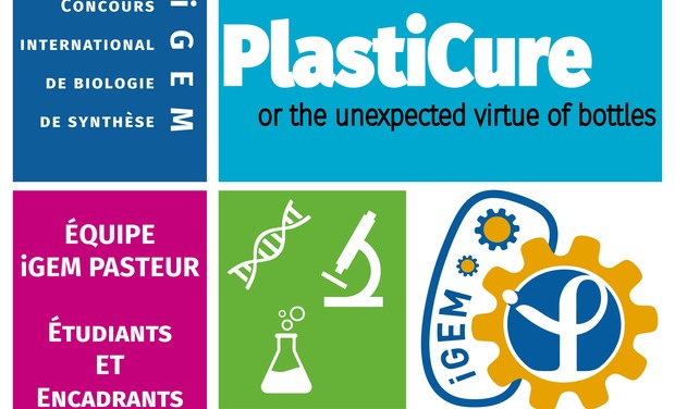Project visual iGEM Pasteur 2015 - PLASTICURE, or the unexpected virtue of bottles