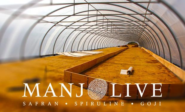 Project visual MANJOLIVE ● safran ● spiruline ● goji ●