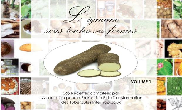Large_l_igname_sous_toutes_ses_formes-1428969595