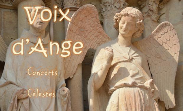 Visuel du projet Voix d'Ange