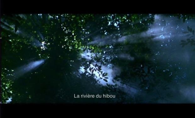 Project visual Projet court-métrage : la rivière du hibou