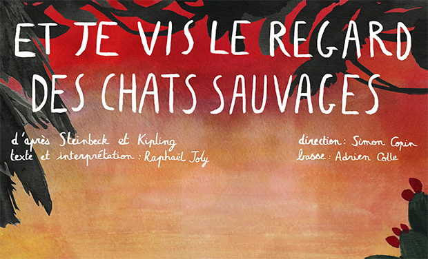 Project visual Et je vis le regard des Chats Sauvages en Avignon !
