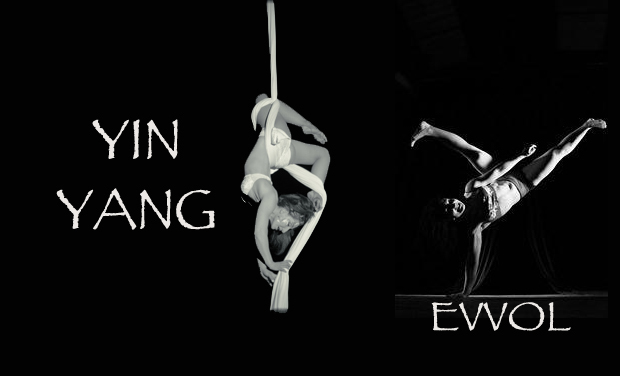 Visueel van project YIN & YANG - Danse / Tissus aériens