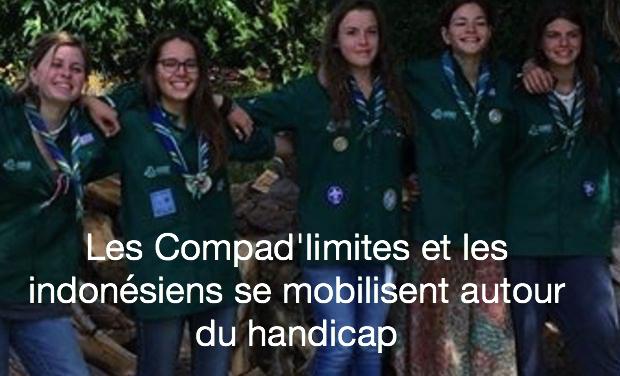 Visueel van project Les Compad'limites et les indonésiens se mobilisent autour du handicap
