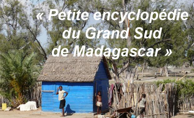 Visueel van project Petite encyclopédie du Grand Sud de Madagascar