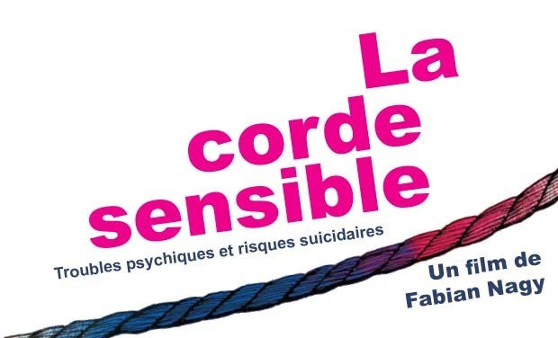 Large_la_corde_sensible_620x376-1432224372-1432224378