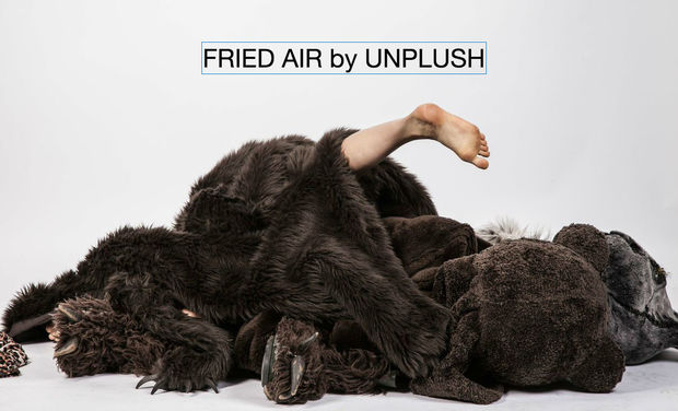 Visuel du projet Fried Air by Unplush