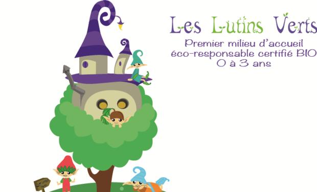 Visueel van project Les lutins verts