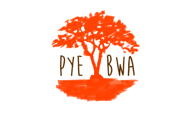Project visual PYE BWA