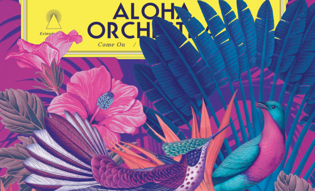 Project visual Aloha Orchestra - Vinyle!