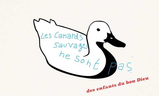 """Visuel du projet """"Les Canards sauvages ne sont pas des enfants du bon Dieu"""""""