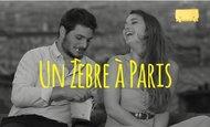 Widget_un_zebre_accueil_kiss-1437123389-1437123396