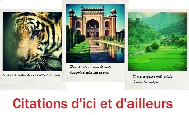 Large_fonds_ici_et_ailleurs-1433943647-1433943654