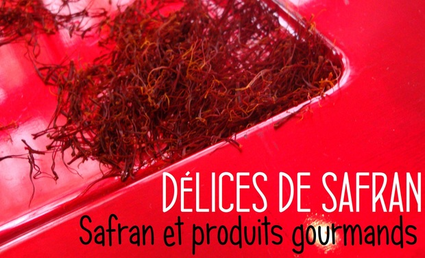Visuel du projet Délices de Safran