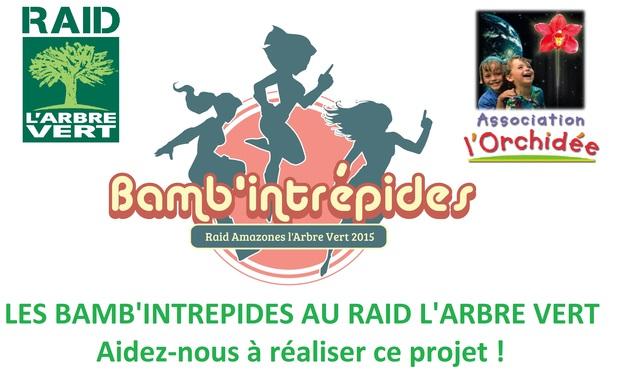 Visuel du projet Les Bamb'intrépides au Raid L'Arbre Vert 2015