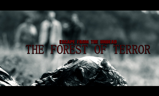 Visuel du projet THE FOREST OF TERROR