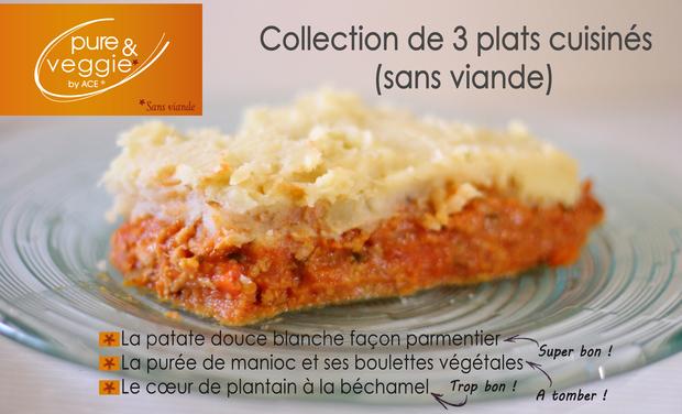 Large_pure_veggie__by_ace_-_ecras__de_patate_douce_fa_on_parmentier-1450175089-1450175108