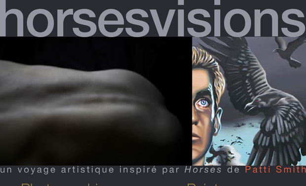 Project visual horsesvisions