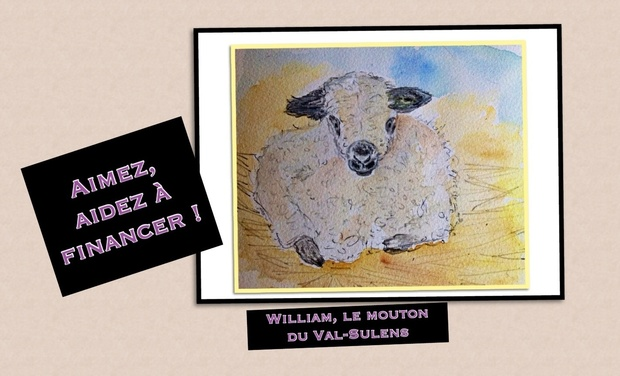 Project visual William, le mouton du Val-Sulens,  un Album pour la jeunesse, édité par les éditions Brindefoli'vre.