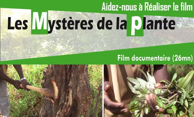 Visueel van project Les Mystères de la plante