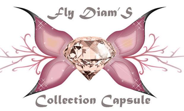 Visuel du projet Fly Diam'S: Collection Capsule