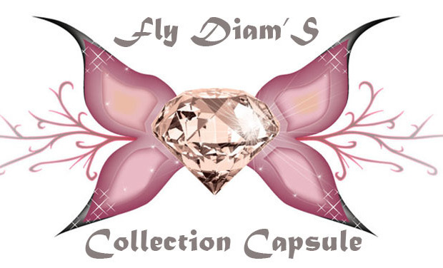Visueel van project Fly Diam'S: Collection Capsule
