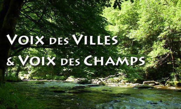 Large_voix_des_villes_et_voix_des_champs_la-1436025823-1436025829