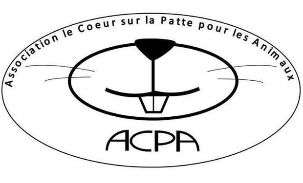 Project visual Financement d'opération association ACPA