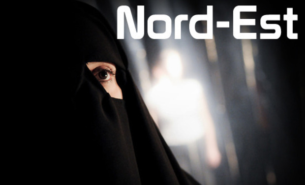 Project visual Nord-Est