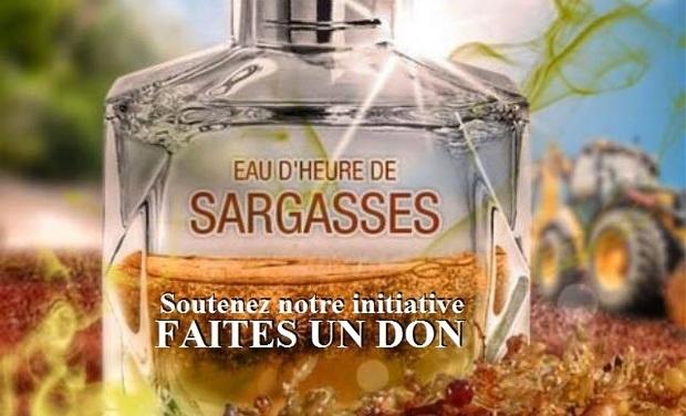 Large_eau_d_heure_de_sargasses2-1441567334-1441567388