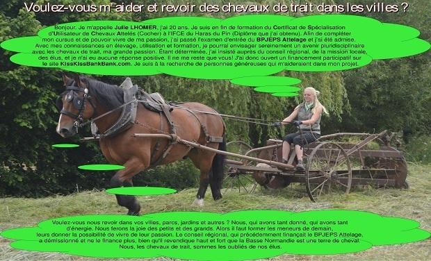 Visuel du projet Voulez-vous m'aider et revoir des chevaux de trait dans les villes ?