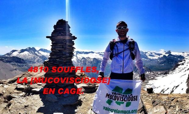 Large_aiguille_de_pers_rouge-1440104236-1440104260
