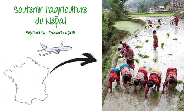 Project visual Soutenir l'agriculture du Népal