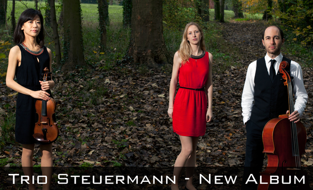 "Visuel du projet New album ""Transfigured Night"" by Trio Steuermann"