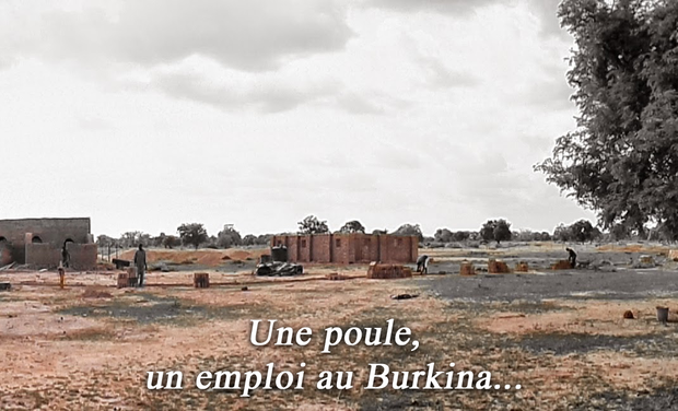 Project visual Une poule, un emploi au Burkina...