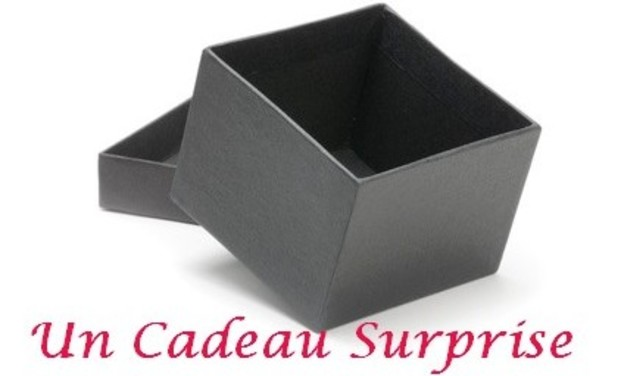 Visueel van project Un cadeau Surprise