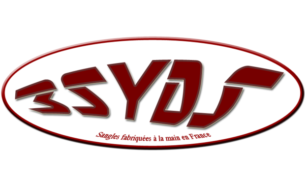 Large_3syds_logo_made_in_france-1442224035-1442224045
